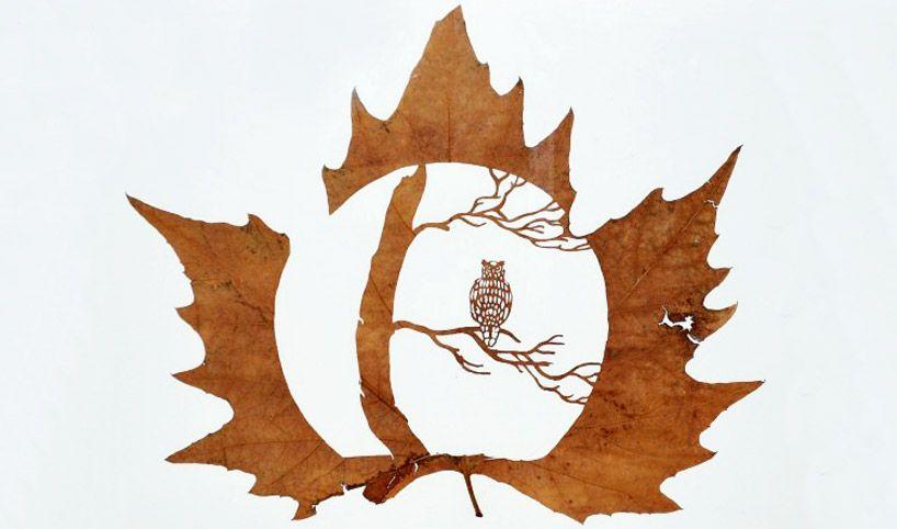 Muster in getrocknete Blätter schneiden - Leaf Art (German) | DIY ...