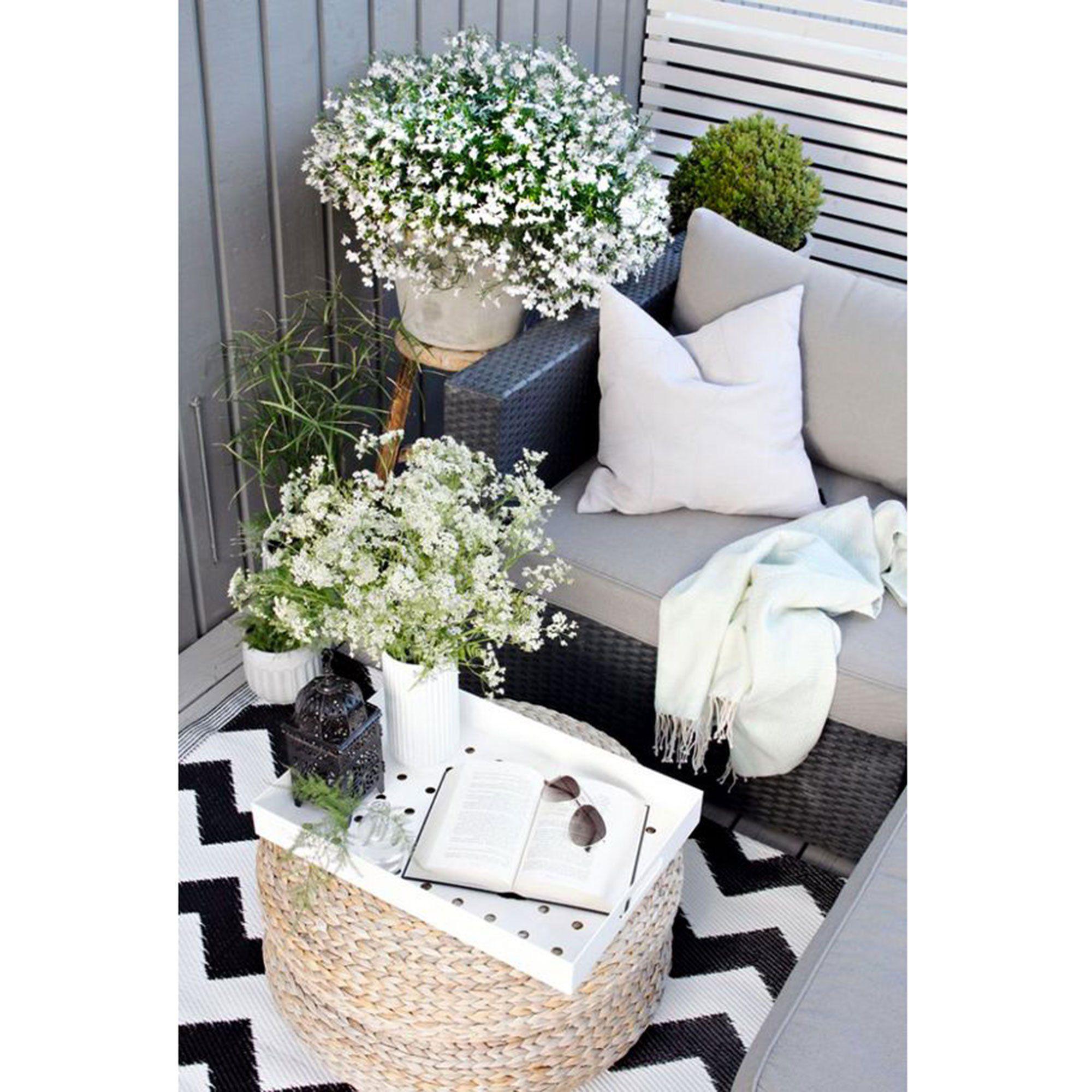 Plantes Fleurs Blanches Balcon Nord Balkon Meubels Appartement Balkon Decoreren Klein Balkon
