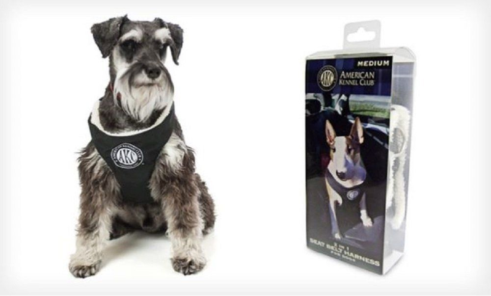 American kennel club 2in1 seat belt harness for dogs