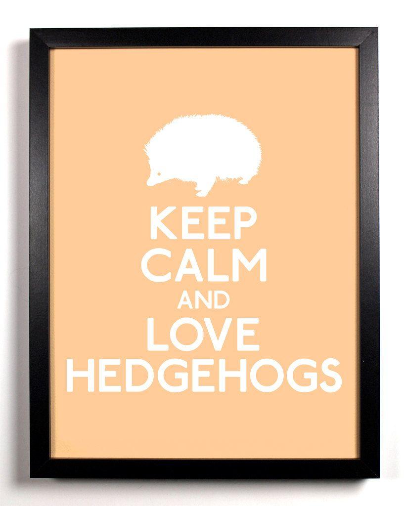 Keep+Calm+and+Love+Hedgehogs+Hedgehog+8+x+by+KeepCalmAndStayGold,+$8.99