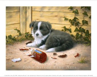 Border Collie Puppy Biscuits Limited Edition Print Personally