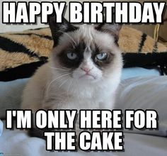 Grumpy Cat Birthday Grumpy Cat Happy Birthday I M Only Here For The Cake By Anonymous Cat Birthday Memes Funny Grumpy Cat Memes Grumpy Cat Birthday