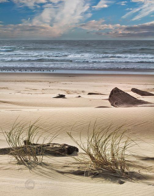 Meditation – sand dunes on the Oregon Coast