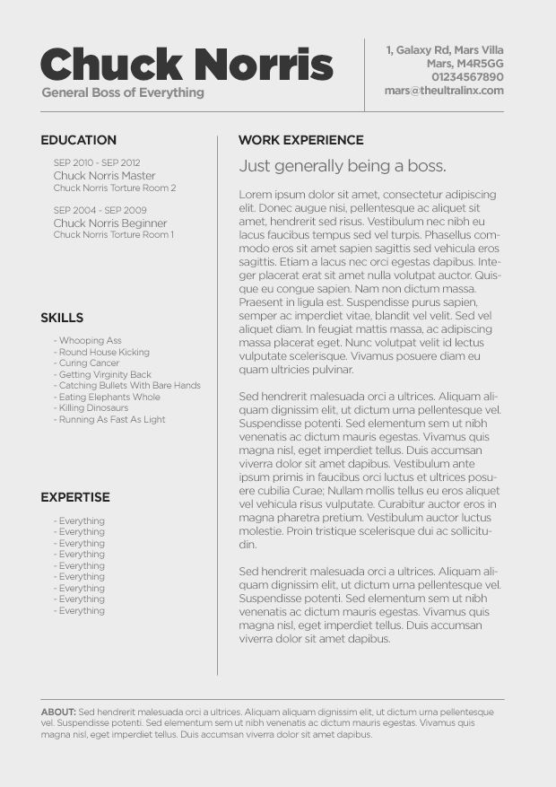 minimal cv resume template lol love the creativity of this resume for chuck norris. Resume Example. Resume CV Cover Letter