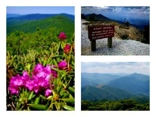 #BlueRidge #Parkway is home to some of nature's most beautiful playgrounds! Summer is the perfect time to visit Asheville and all of the hiking trails nearby.  #summerhiking #ashevillehikingtrails #blueridgeparkway #BlueRidge #Parkway is home to some of nature's most beautiful playgrounds! Summer is the perfect time to visit Asheville and all of the hiking trails nearby.  #summerhiking #ashevillehikingtrails #blueridgeparkway #BlueRidge #Parkway is home to some of nature's most beautiful playgro #blueridgeparkway
