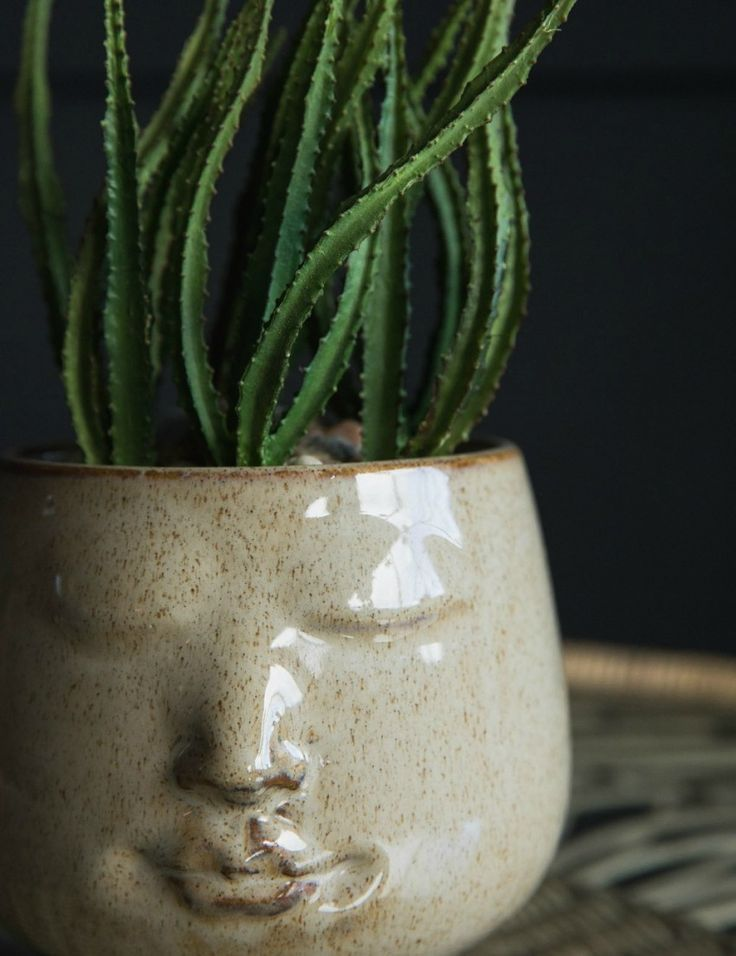 Photo of Face Plant Pot – Décor de jardin