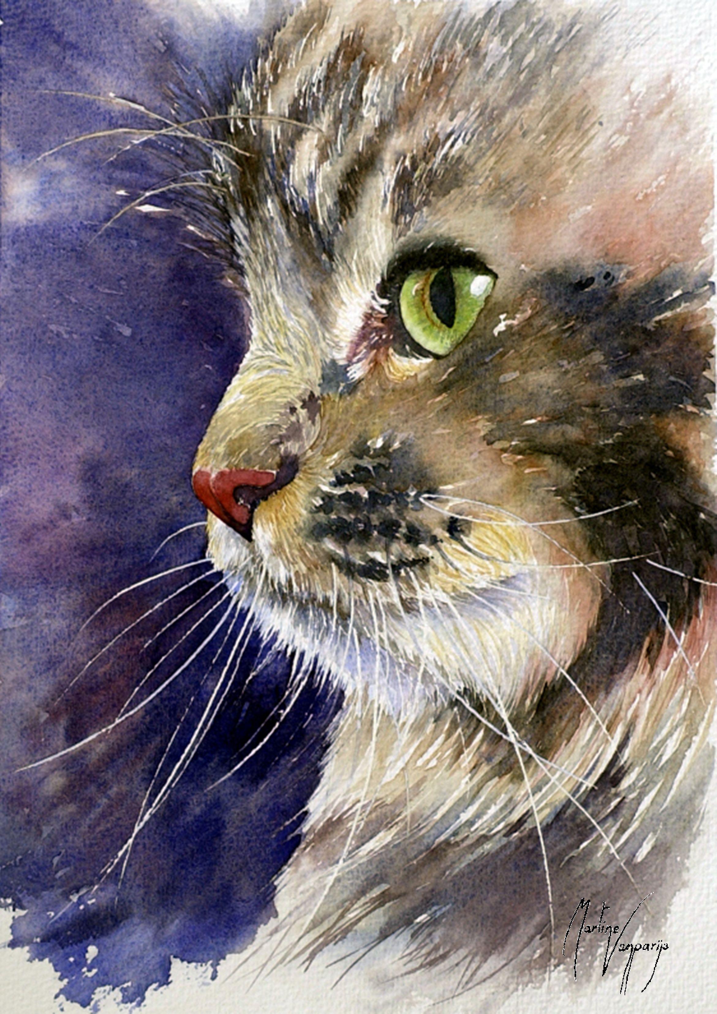 Katze Tiere Malen Illustration Katze Katze Malen