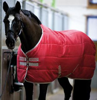 Horseware Amigo Insulator Le Rug The Medium Weight Horse Is A Great To Add Your Horses Winter
