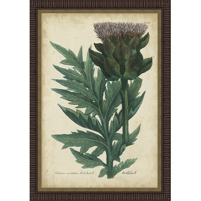 Ashton Wall Décor LLC In Bloom \'Weinmann Foliage & Fruit II ...