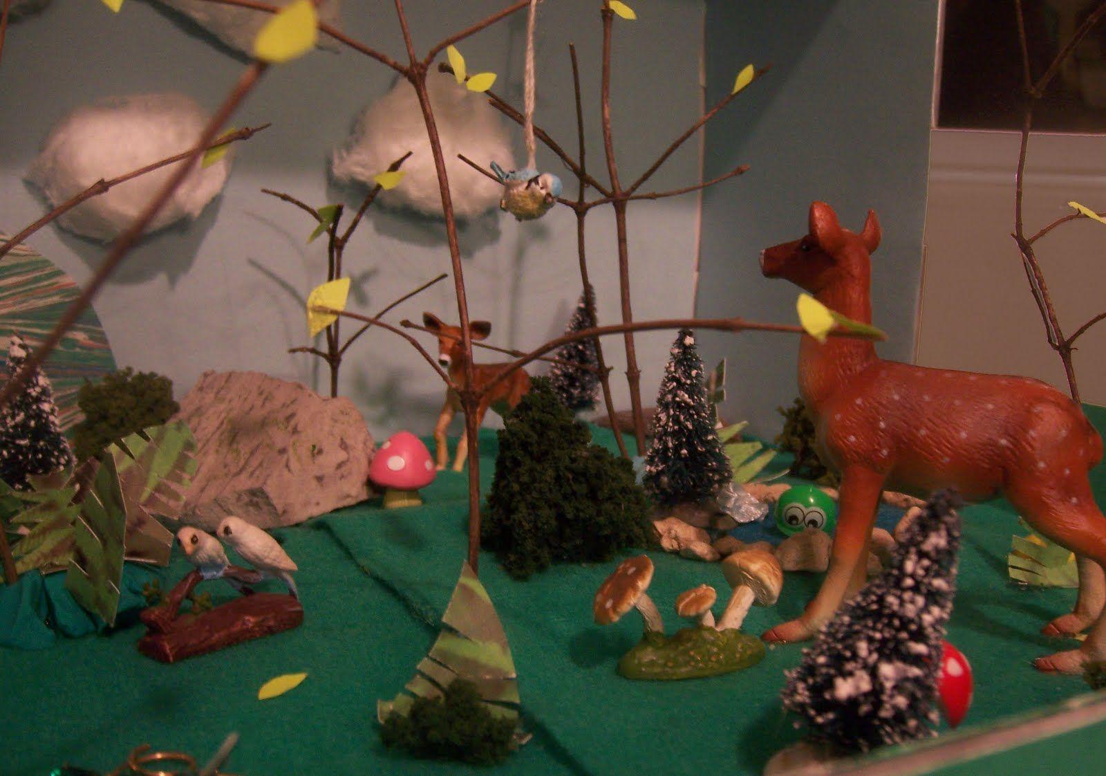 Woodland Forest Habitat Second Grade