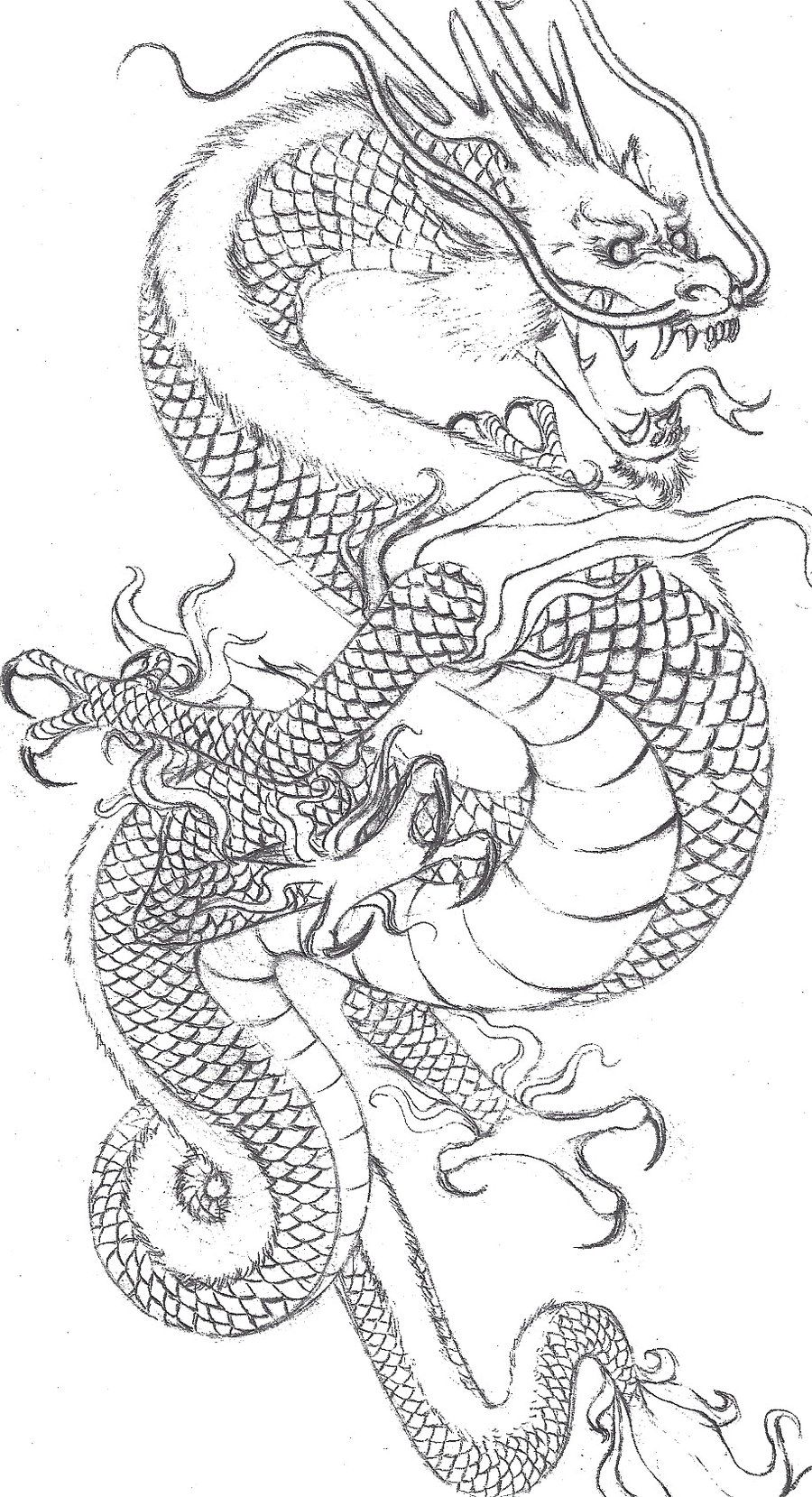 Gallery For gt Drawings Of Japanese Dragons