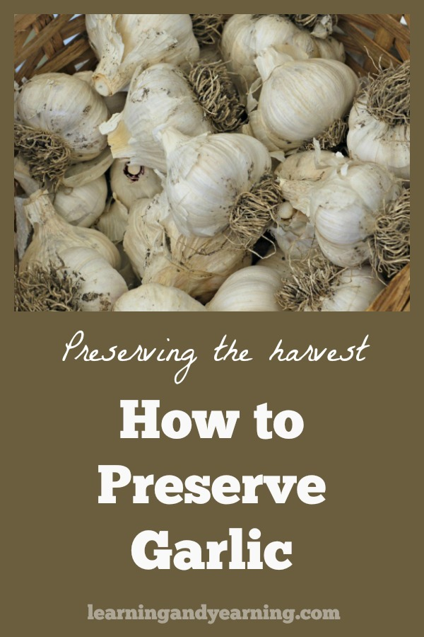 Make Your Own Garlic Powder and Other Ways to Preserve
