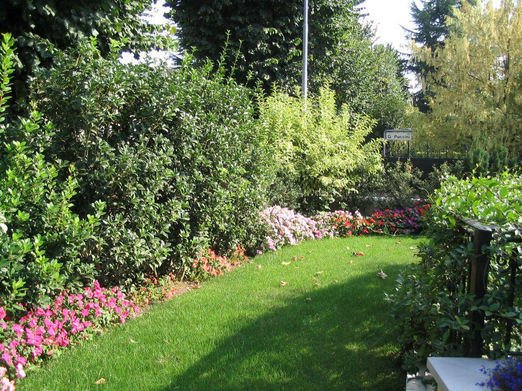 Siepi Miste Da Giardino immagine progetto piccolo giardino con fioriture stagionali