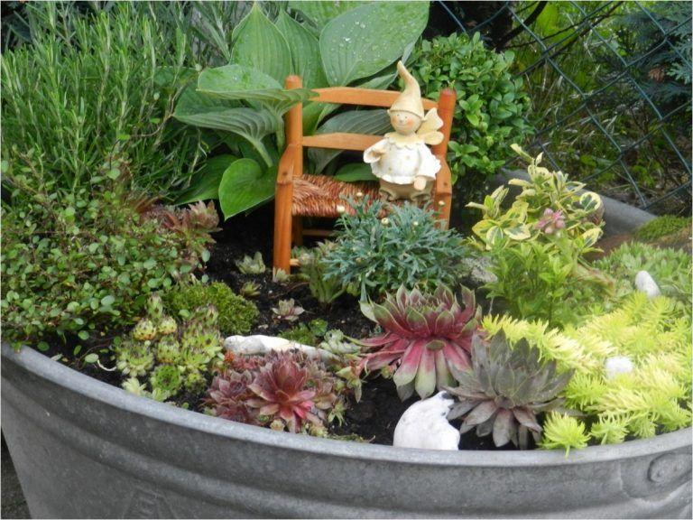 Image Result For Zinkwanne Bepflanzen Kuebel Miniteich