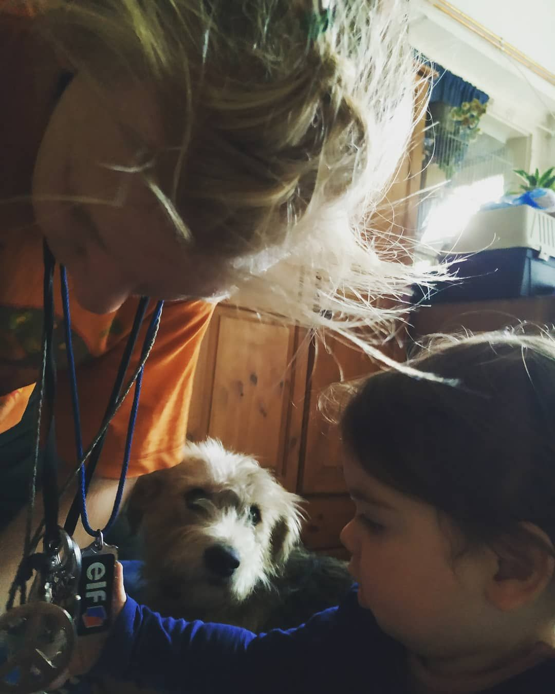 #kids #dogstagram #dogsofinstagram #doglovers #dog