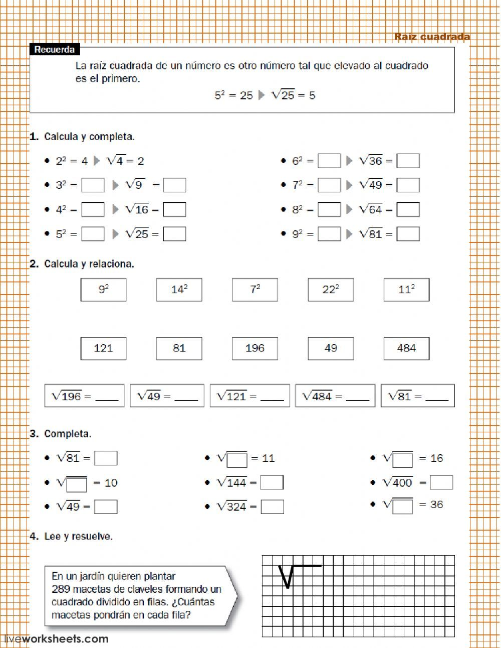 Raiz Cuadrada De Un Numero Raíz Cuadrada Interactive And Downloadable Worksheet You Can Do