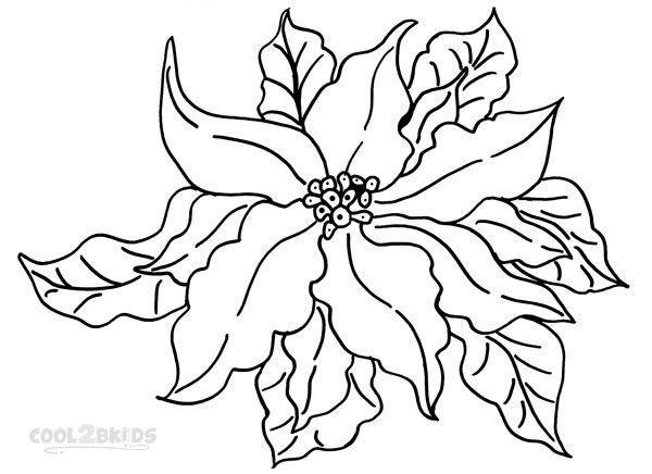 Images of Poinsettia Coloring Pages Print | Christmas coloring ...