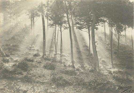l onard misonne soleil et brouillard sonne und nebel 1898 platindruck film photography. Black Bedroom Furniture Sets. Home Design Ideas