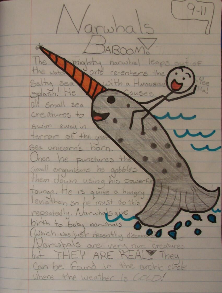 "Sacred Writing Time allows my students to be free with their topics for ten simple minutes, and that makes such a difference.  I can teach them harder writing skills after they've enjoyed a quick, daily warm-up. Here is Victoria's winning ""Mr. Stick of the Week"" from the Fall about narwhals!  Visit the Mr. Stick Page for more ideas: http://corbettharrison.com/Mr_Stick.html"