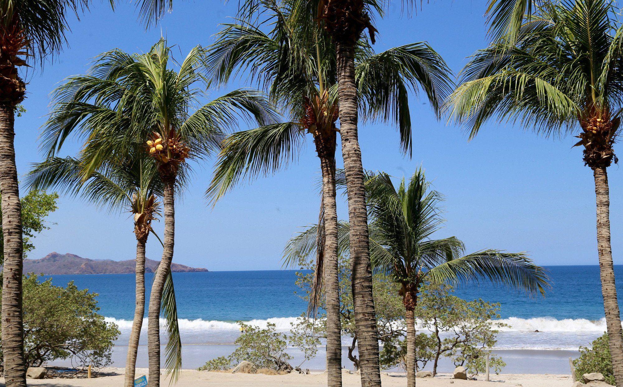 Book Flamingo Beach Resort Costa Rica