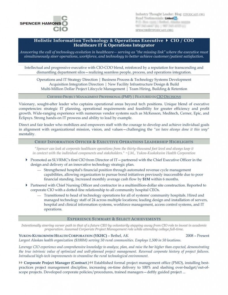 Chief information officer resume example resume examples