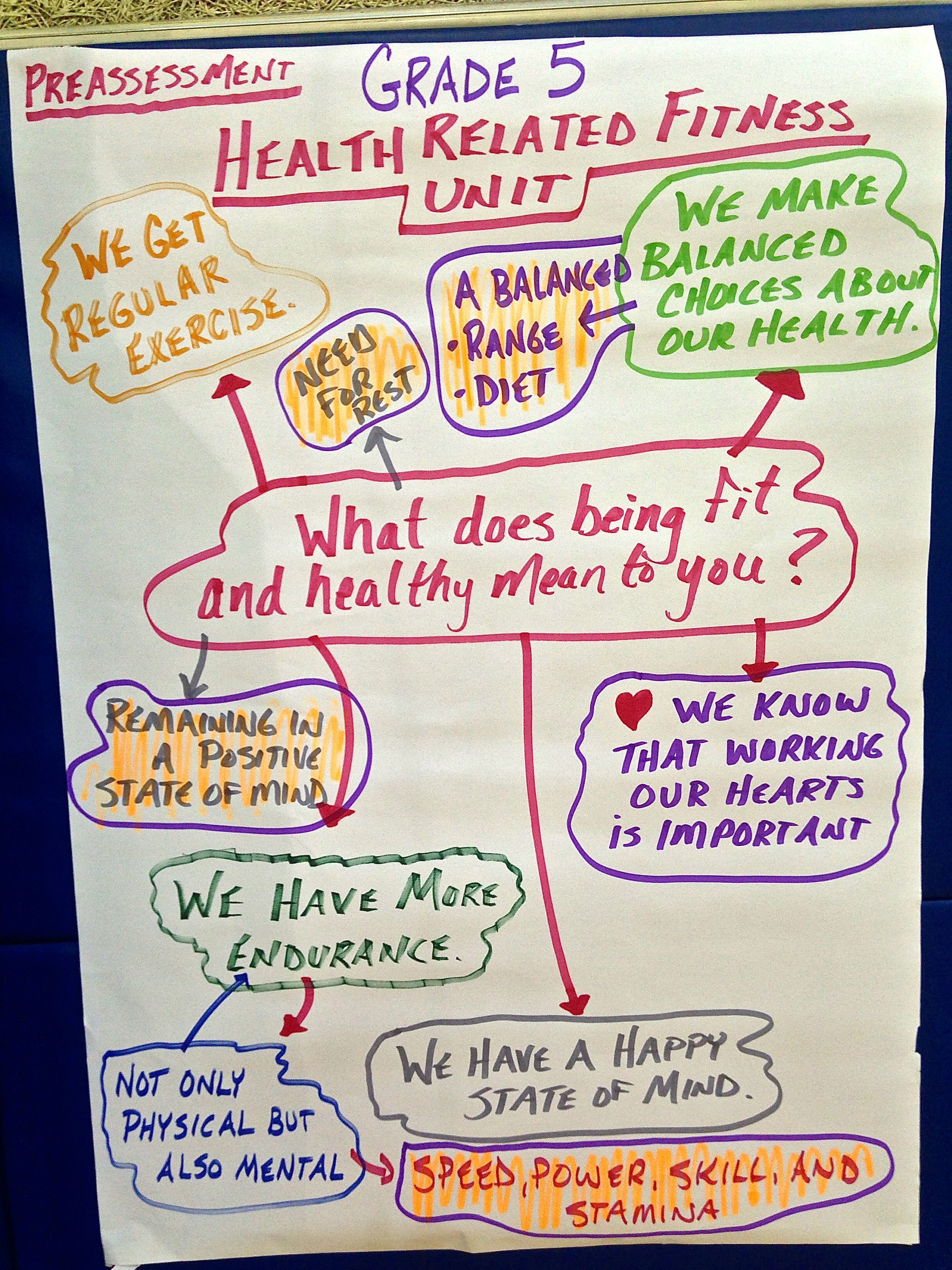 Student Generated Ideas About What Being Fit And Healthy