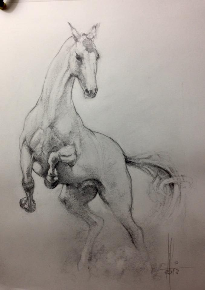 Dibujo Caballo Grafito Por Francisco Javier Abellan Animal Drawings Animal Photography Dogs Geometric Artists