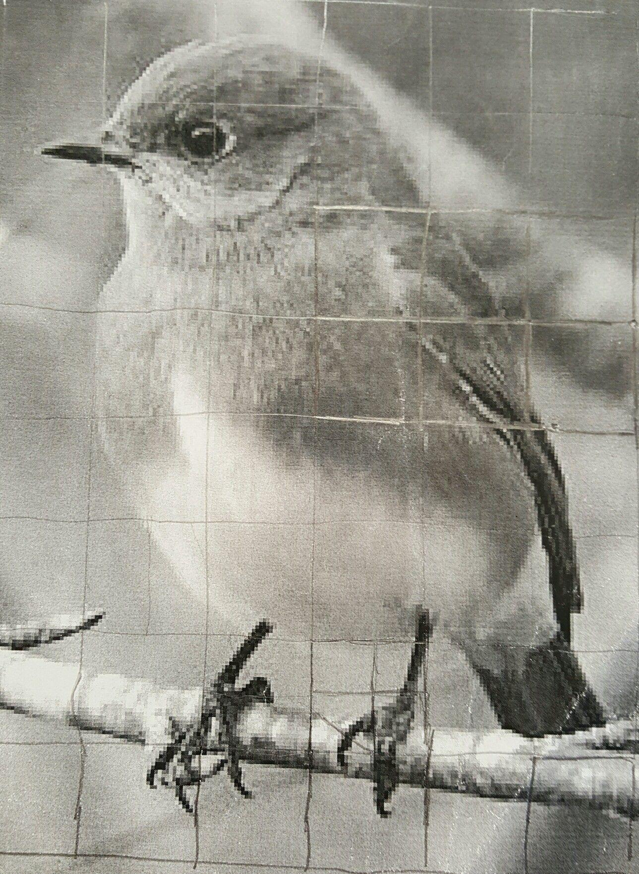 Draw Grid Over Photocopy Little Bird