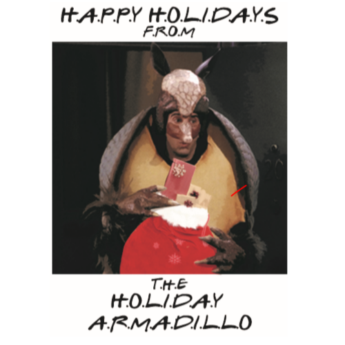 70% OFF + BUY 2 GET 1 FREE - Funny Friends Ross Christmas Card, Happy Holidays Armedilo Card, Christmas Gift, Christmas Card, Ross Card, Friends, for Him Her Best Friend -   19 happy holiday Funny ideas