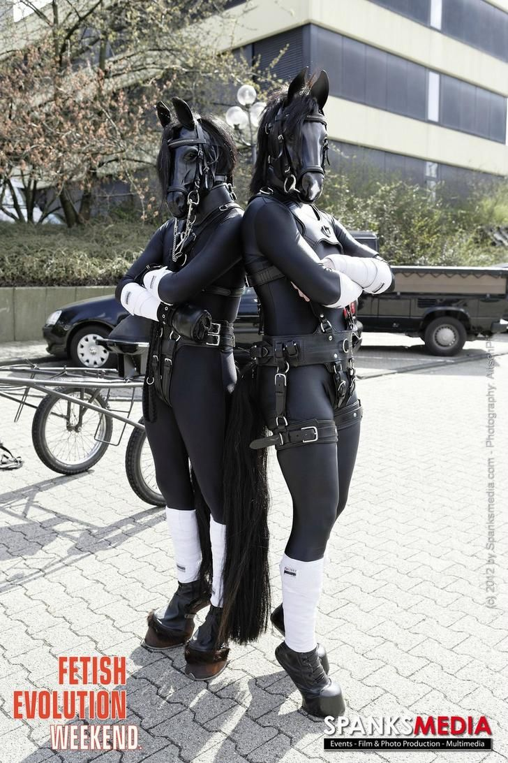 Imgur The most awesome images on the Internet  Ponyplay Collection