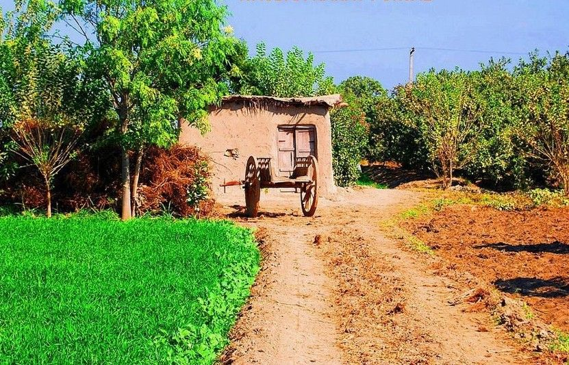 Pakistani village life photo of a mud hut and a cart in a for Home wallpaper karachi
