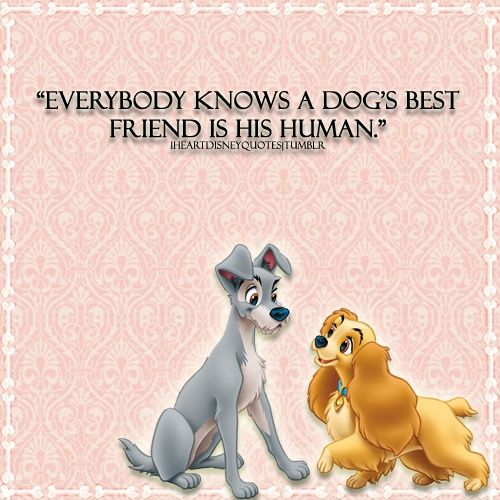 Cute Disney Quotes Tumblr: Cute Disney Quotes About Dogs Images TUmblr