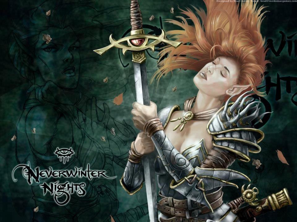 Neverwinter Female High Elf Warrior Aribeth De Tylmarande Neverwinter Nights Elf Warrior Fantasy Art