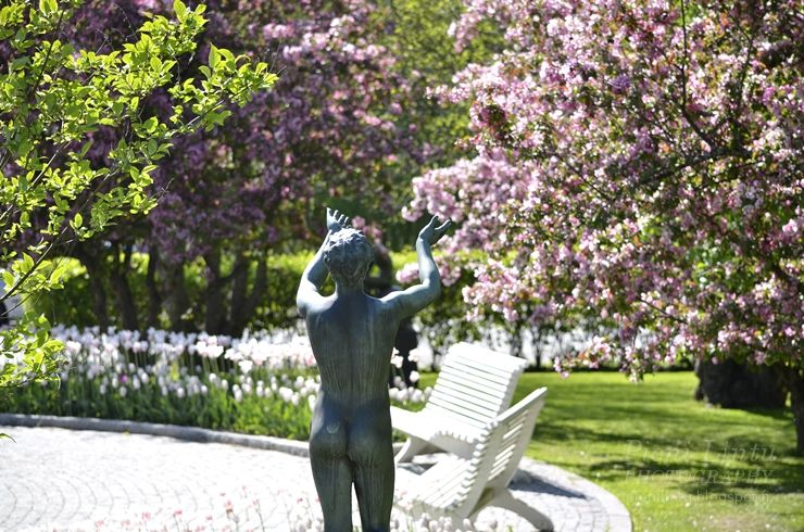 http://www.pienilintu.blogspot.fi/2014/06/setterberg-park-linky.html