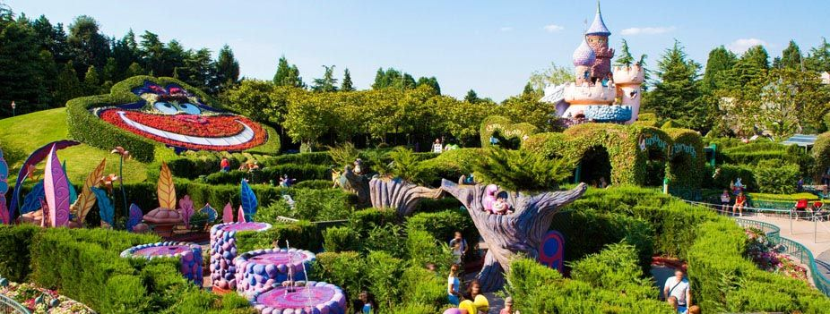 Image result for alice in wonderland at DLP