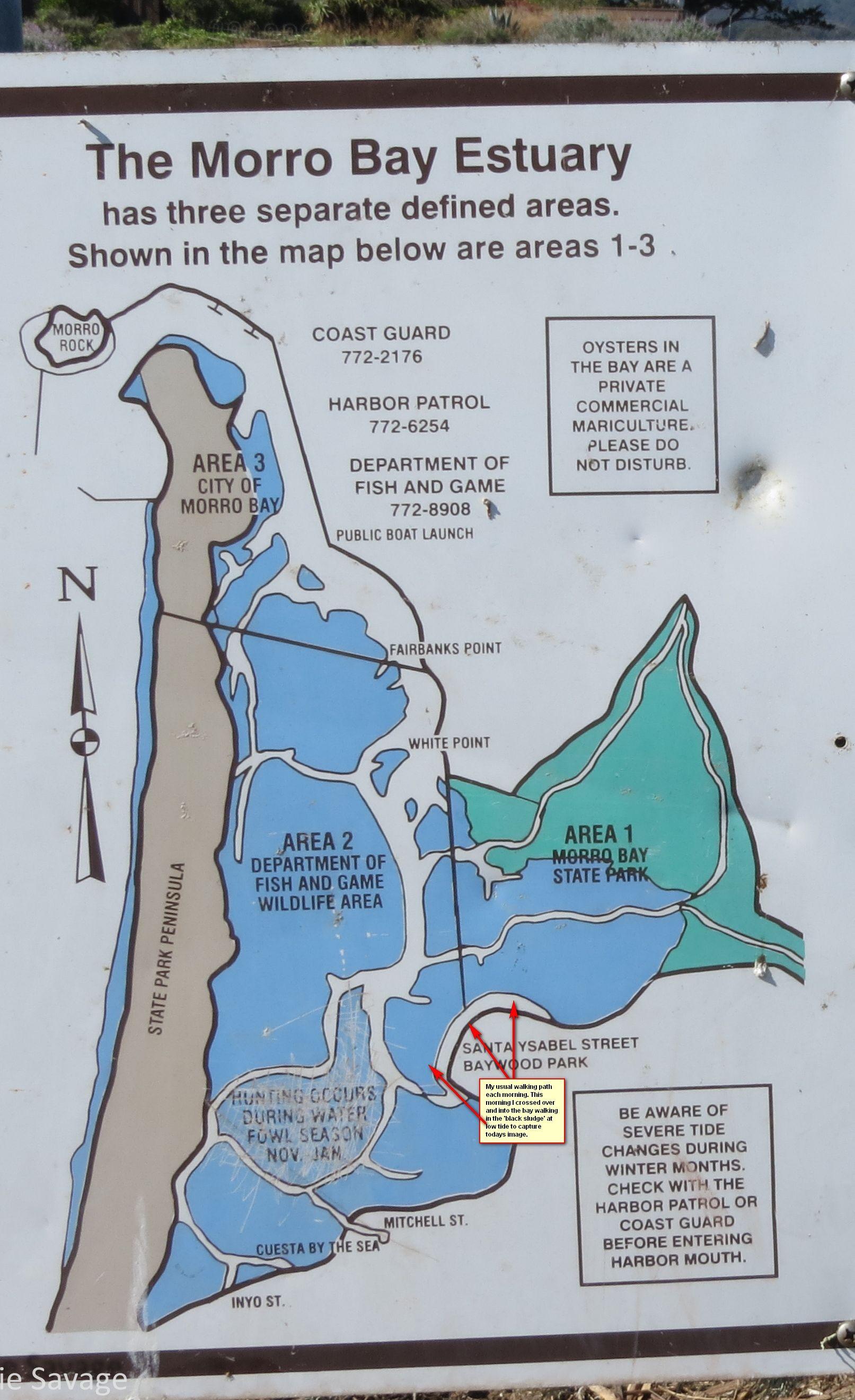 Morro bay tide chart images chart design ideas morro bay tide chart choice image chart design ideas morro bay estuary map google search camp nvjuhfo Gallery