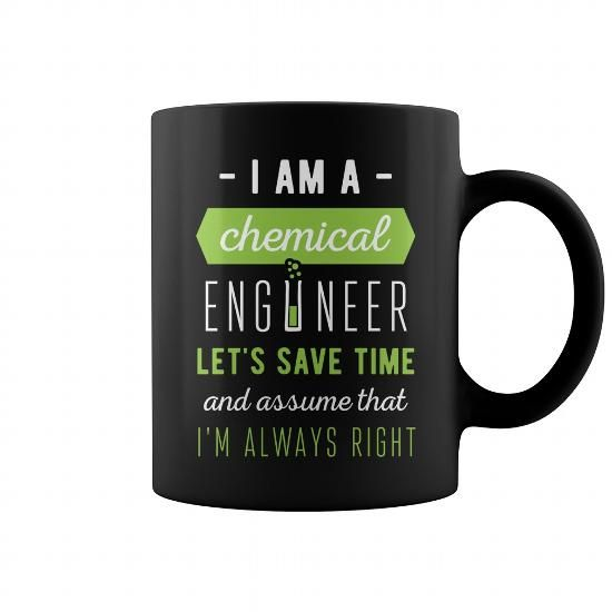 Chemical Engineer I am a Chemical engineer Lets save time and - chemical engineering job description