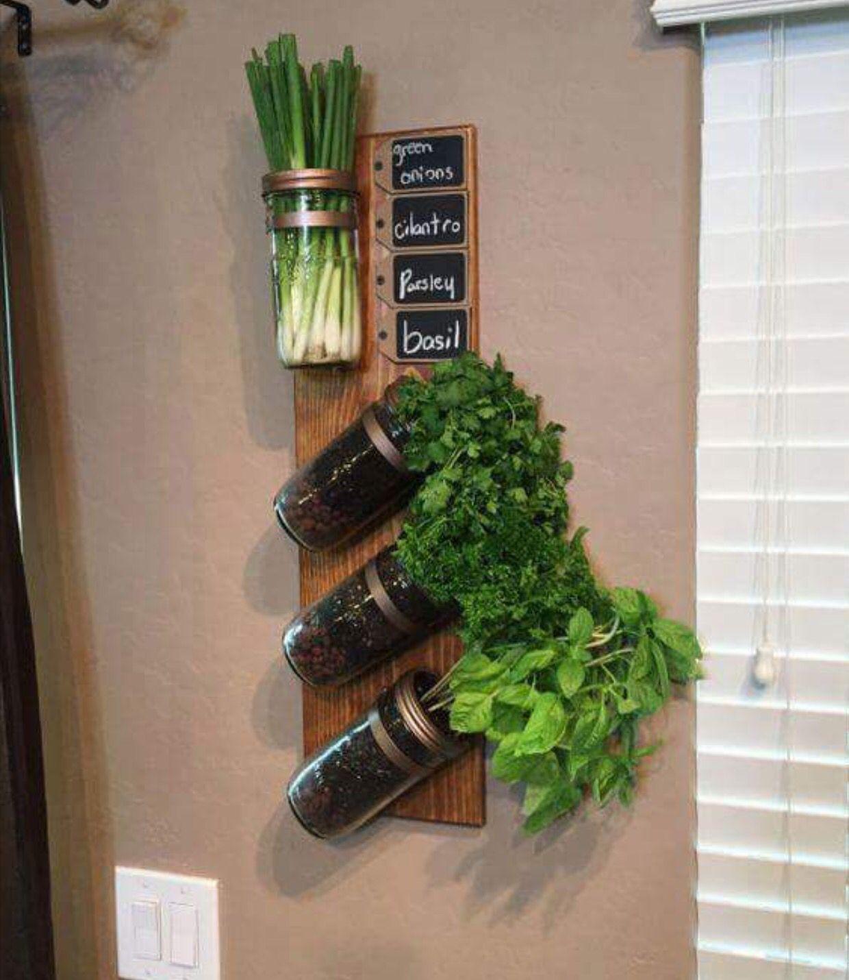 spices apartment herb gardens diy herb garden vertical on indoor herb garden diy apartments living walls id=34085