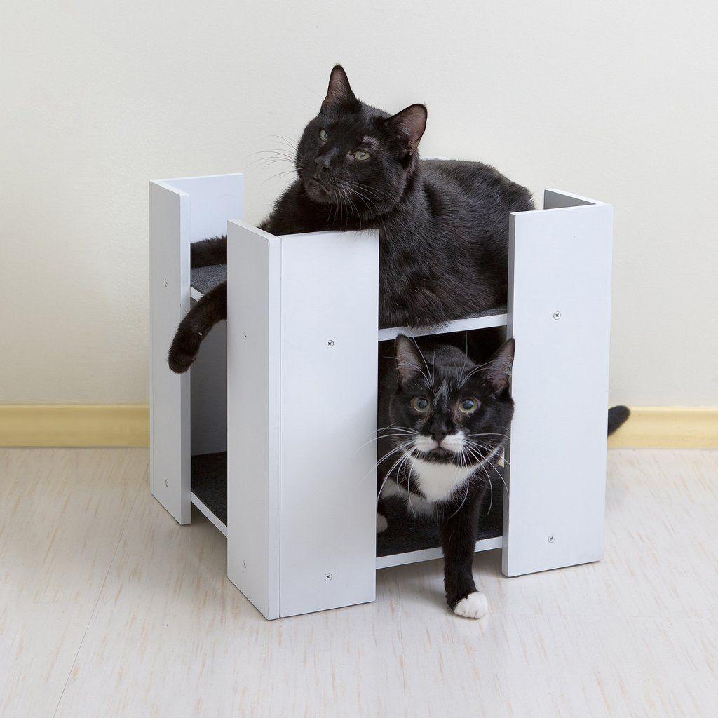 cubitat cat bed modern cat furniture (white or espresso)  cat  - cubitat cat bed modern cat furniture (white or espresso) – designer petfurniture