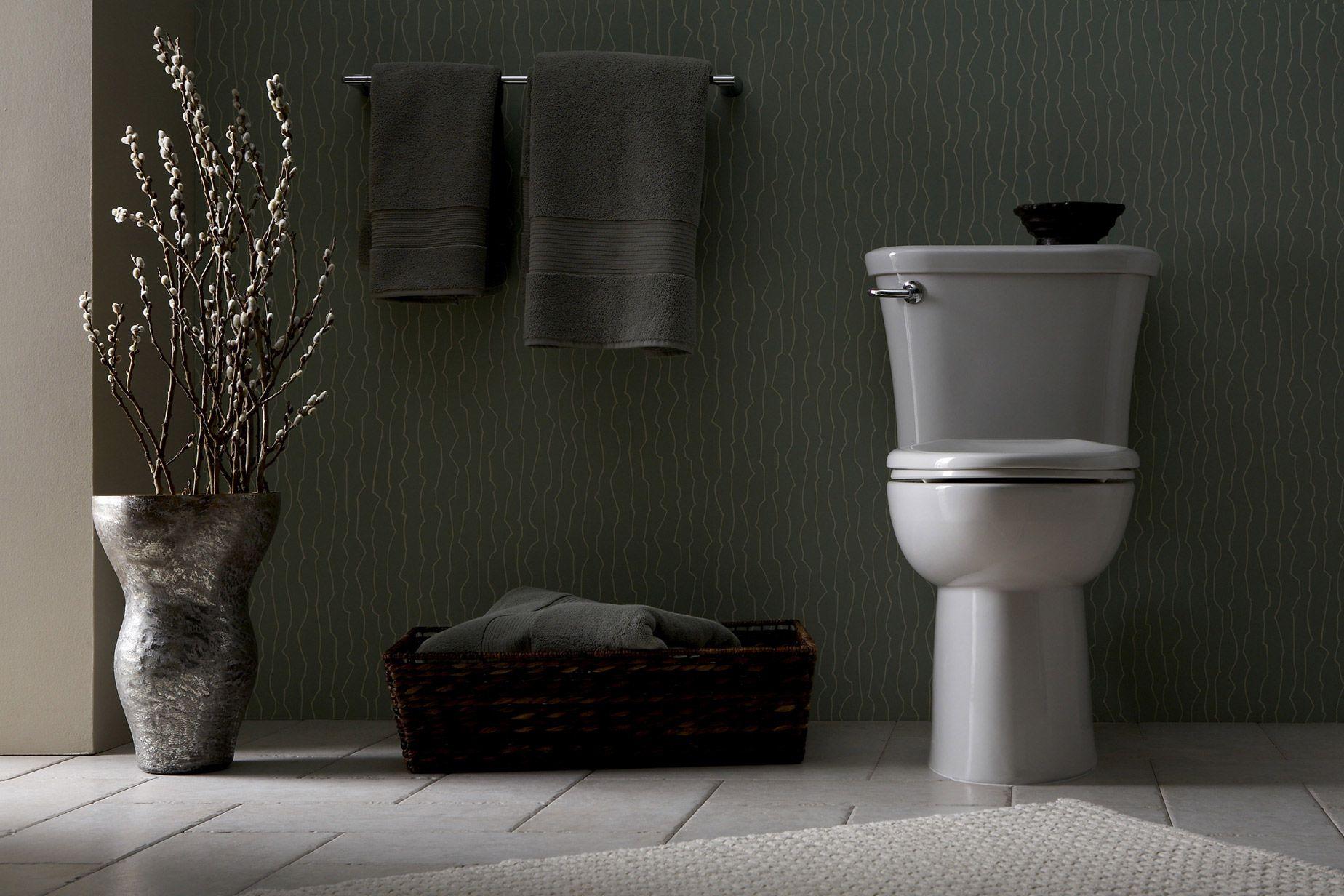 American Standard S Modern Toilet For Stylish Bathroom Tropic Collection Toilet Bathroom Toilets Bathroom
