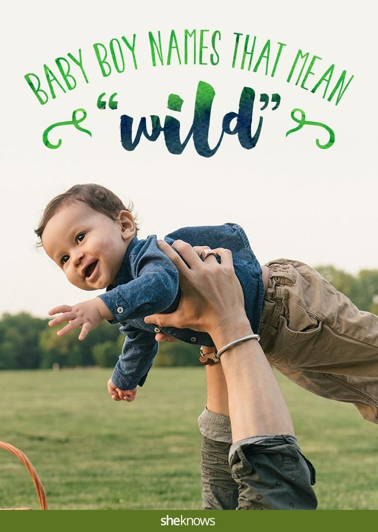 Take A Walk On The Wild Side With These Baby Boy Names