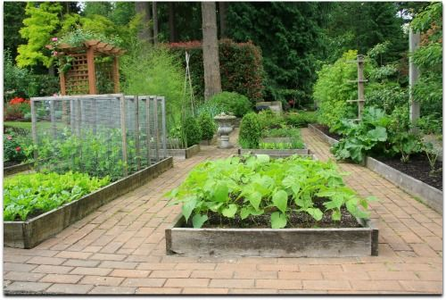 free raised bed vegetable garden plans and worksheets easy steps and plans to build a - Vegetable Garden Ideas Designs Raised Gardens