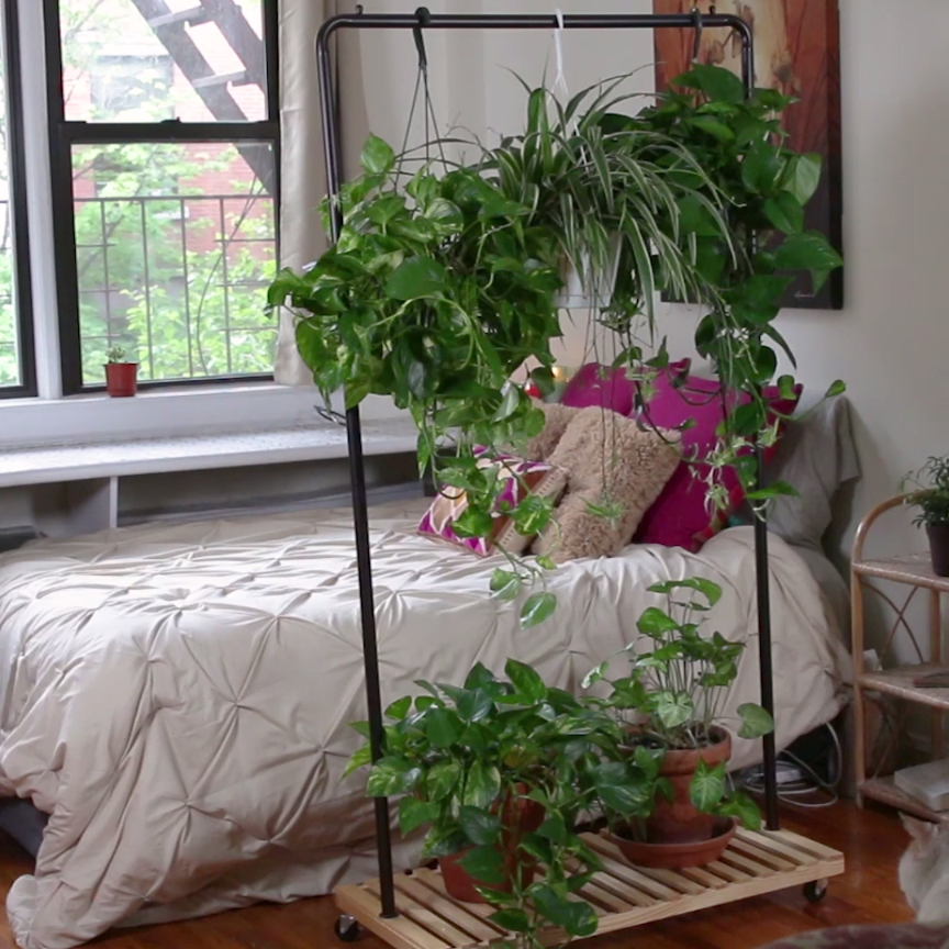 Hanging Plant Room Divider DIY Pinterest Plant rooms Hanging