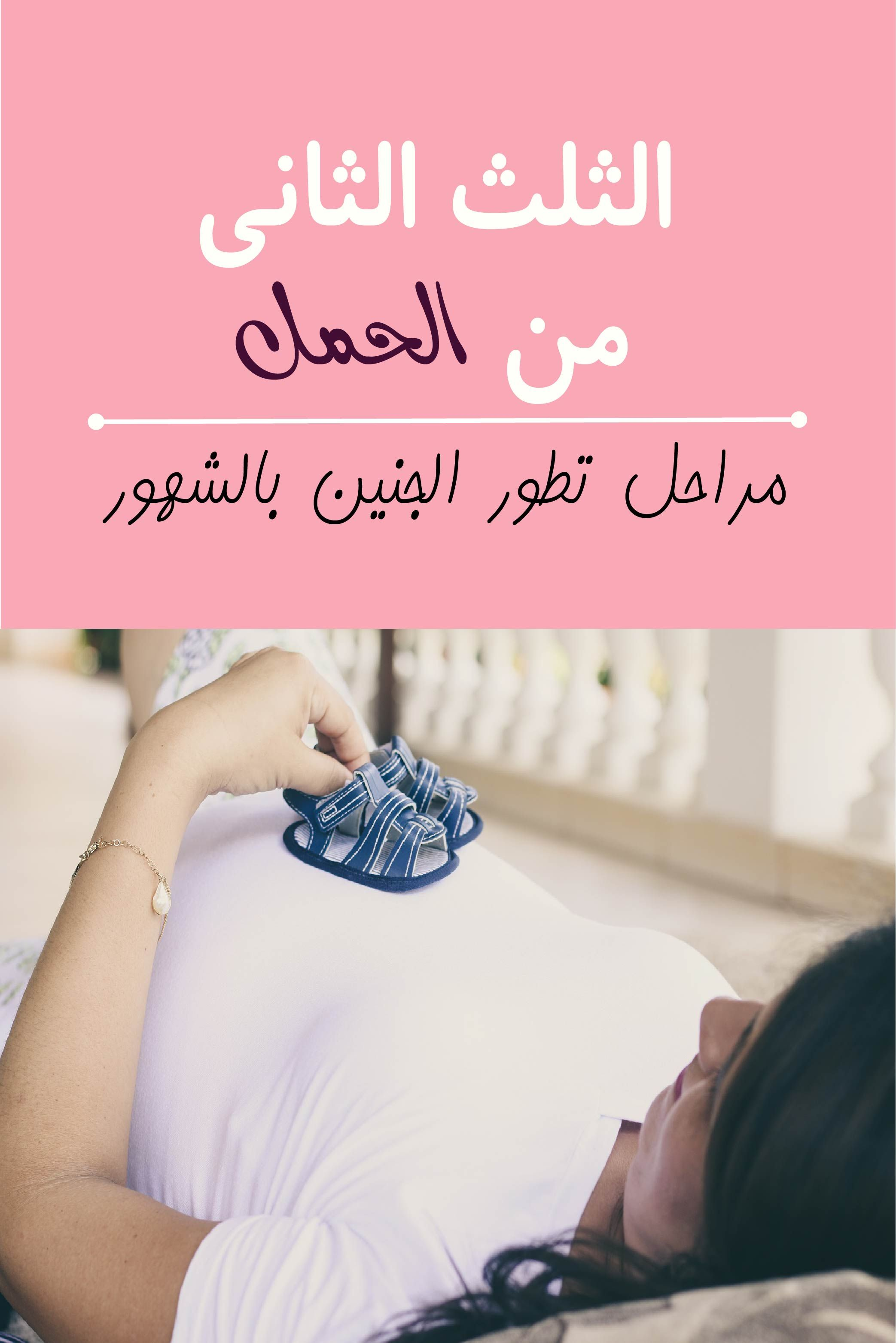 الثلث الثاني من الحمل مراحل تطور الجنين بالشهور Blog Wearable Blog Posts