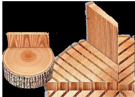 Rift Sawn Lumber