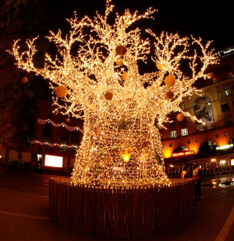 Lit Up Baobab Tree In Nelson Mandela Square African Christmas Christmas In South Africa Christmas Tree Decorations