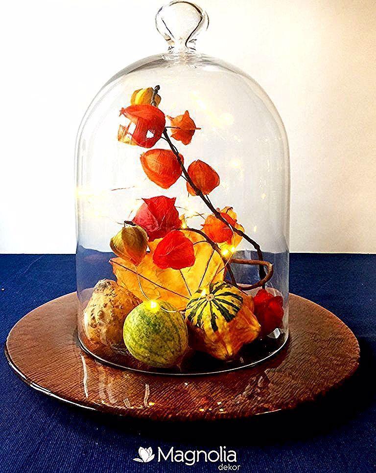 Herbstliche Tischdeko unter einer Glasglocke - leicht zu zaubern #herbstlichetischdeko Herbstliche Tischdeko unter einer Glasglocke #herbstlichetischdeko Herbstliche Tischdeko unter einer Glasglocke - leicht zu zaubern #herbstlichetischdeko Herbstliche Tischdeko unter einer Glasglocke #herbstlichetischdeko Herbstliche Tischdeko unter einer Glasglocke - leicht zu zaubern #herbstlichetischdeko Herbstliche Tischdeko unter einer Glasglocke #herbstlichetischdeko Herbstliche Tischdeko unter einer Glas #herbstlichetischdeko