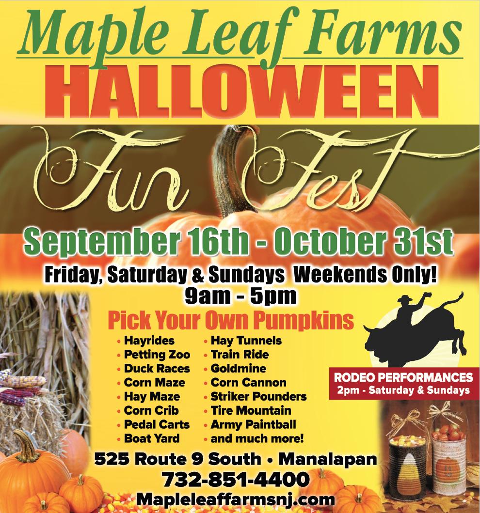 Maple Leaf Farms Manalapan Nj Nursery In Manalapan Nj Maple Leaf Farms Manalapan Nj Pick Your Own Pumpkins Train Rides Hay Maze