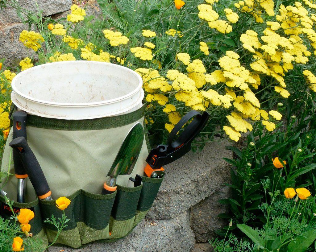 Best Perennials For Cut Flowers Perennials Cut Flowers And Yard Care