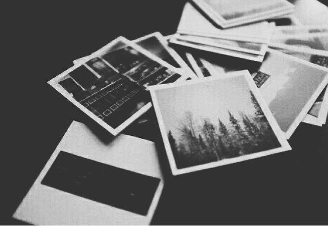 Polaroid Trees Blackandwhite Black White Blackwhiteaesthetic Aesthetic Pinterest Tumblr Newt Black Aesthetic Black And White Aesthetic Gray Aesthetic